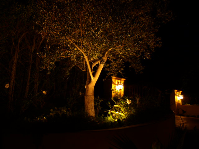 Calabasas Lighting Landscape Lights